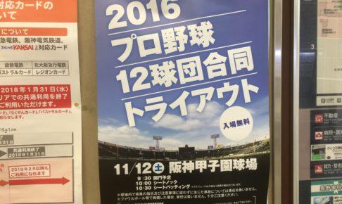 2016プロ野球12球団合同トライアウト
